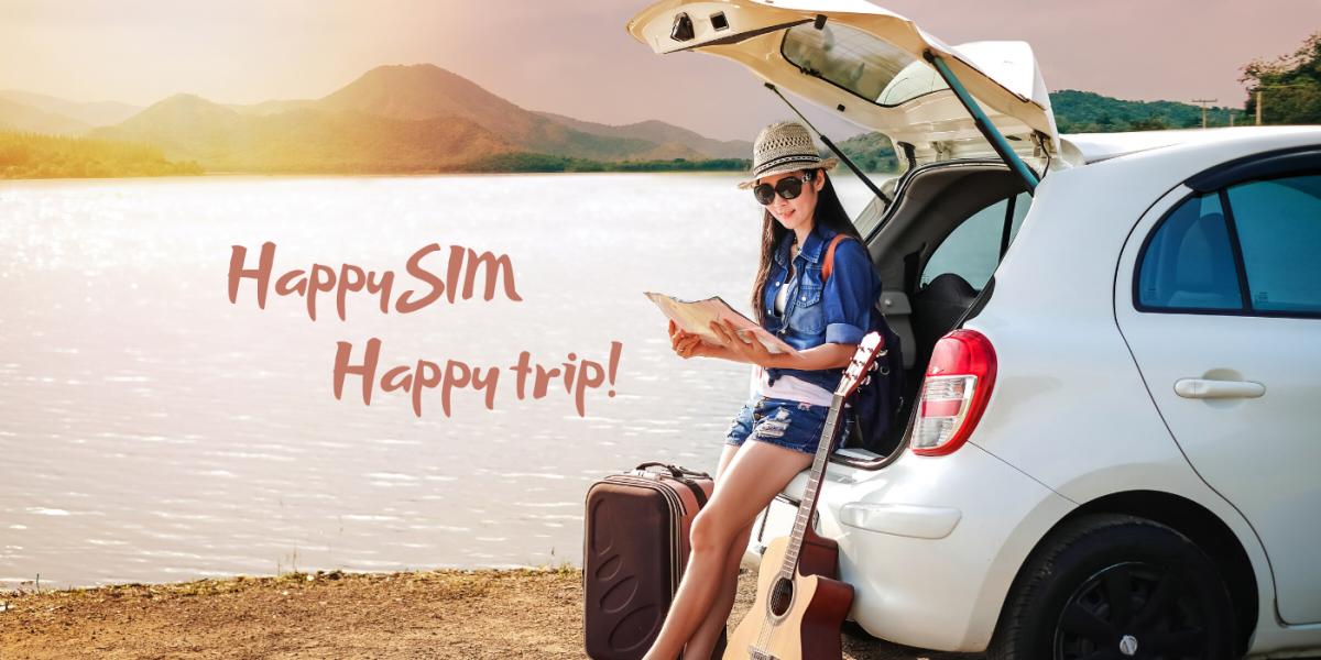 happysim happy trip!
